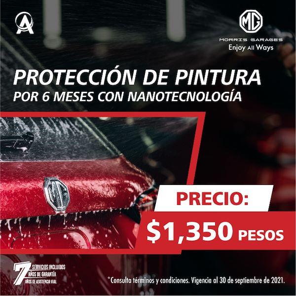 PROTECCION DE PINTURA